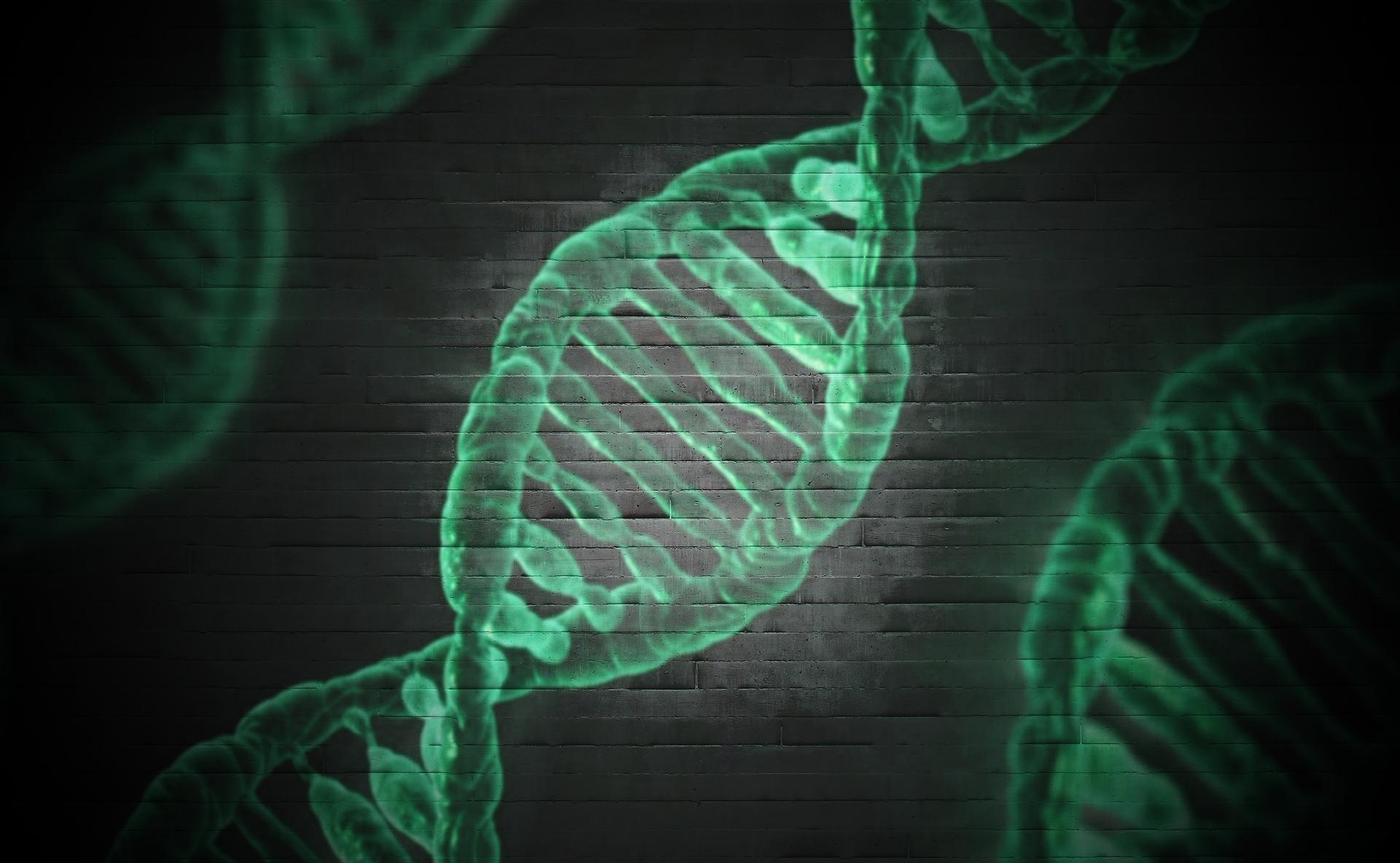 衝撃!「子ども能力遺伝子検査」で子どもが生まれながらにもっている能力を伸ばす!?